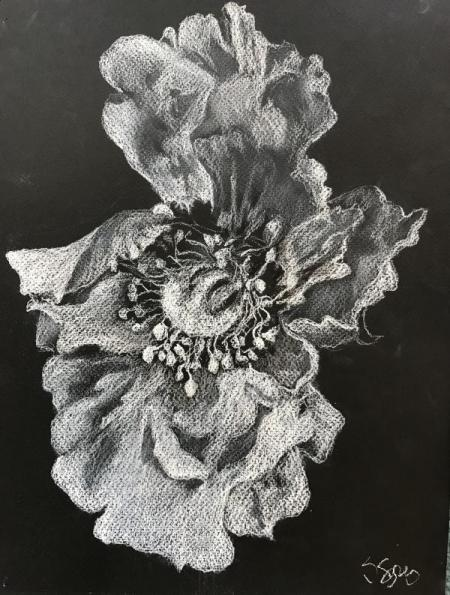 Pastel Pencil on black5 x 10