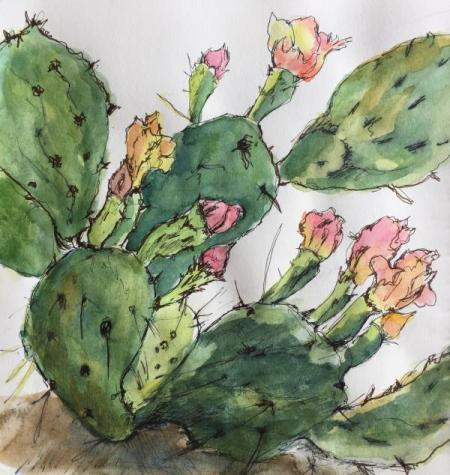 """Cactus Study VII"" Ink and Watercolor"